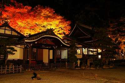 温泉寺周辺紅葉ライトアップ